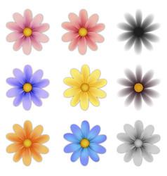 Pattern flower five petal set vector