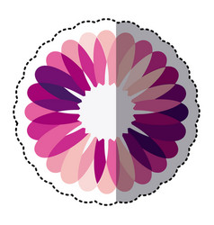 pink flower with petals icon vector image