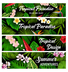 tropical plants and flowers banners cards vector image