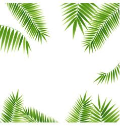 realistic 3d detailed green palm leaf frame vector image vector image