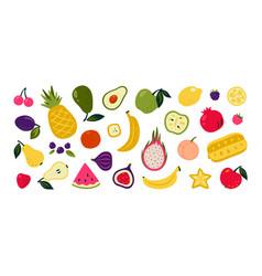 cartoon fruits doodle summer berries watermelon vector image