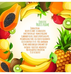 Exotic fruits frame vector image