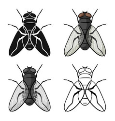 Fly icon in cartoon style isolated on white vector