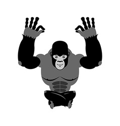 Gorilla meditating Wild animals on white vector image