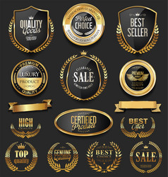 Luxury retro badges gold and silver collection 5 vector