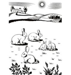 Rabbits and bunnies vector