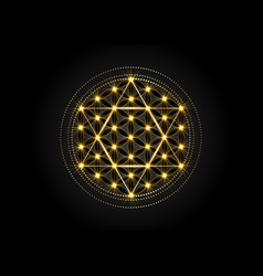Sacred geometry metatrons cube and flower ok life vector