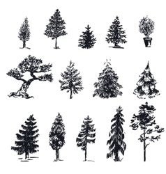 Sketch trees 1 vector image