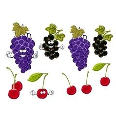 Cartoon grapes cherries black currants fruits vector image vector image