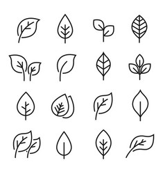 leaf line icon set vector image vector image