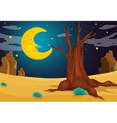 A moonlight evening vector image vector image