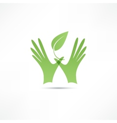 Hands and plant icon vector image