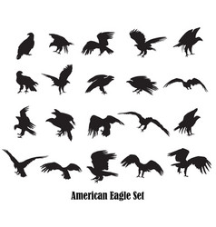 set of american eagle silhouettes vector image