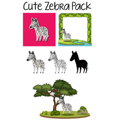 a pack of cute zebra vector image