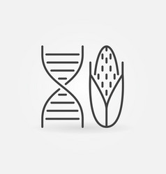 Dna with corn concept icon in outline style vector