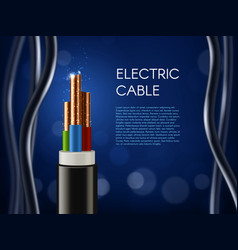 electric cable with copper wire conductors poster vector image