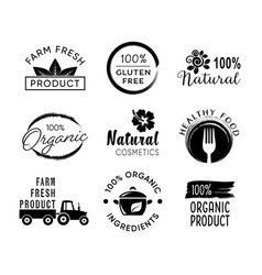 healthy food and organic products labels vector image