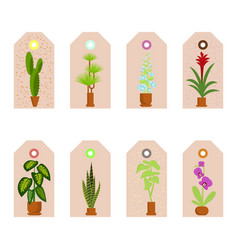 house plants stickers vector image
