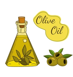 Olive oil bottle vector