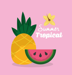 Summer tropical fruits pineapple and watermelon vector