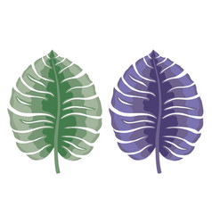 Tropical leaves on a white vector