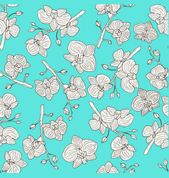 orchid flowers seamless pattern vector image vector image