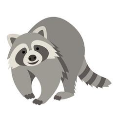 cute smiling raccoon cartoon vector image