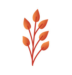 autumn leaf branch - orange vector image