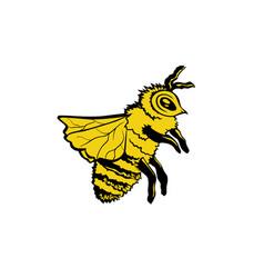 bee hand drawn color ink pen vector image