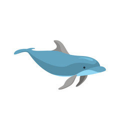 cartoon character funny dolphin on a white vector image