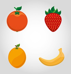 fresh fruit vector image