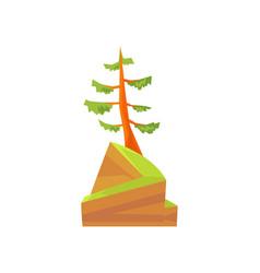 hand drawn cartoon landscape scene with evergreen vector image