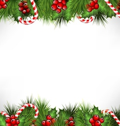 holly with pine and candys isolated on white vector image