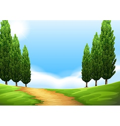 Nature scene with trail and pine tree vector image