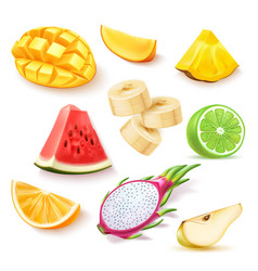 realistic fresh exotic fruits slices set vector image