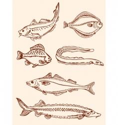 set of vintage saltwater fish vector image