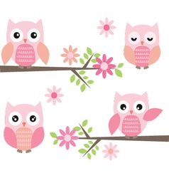 Cut Owl and Branches vector image