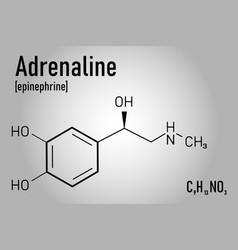 Chemical formula of adrenaline molecule vector
