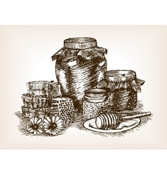 Honey still life sketch style vector image