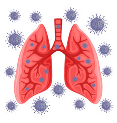Lungs infected with virus vector
