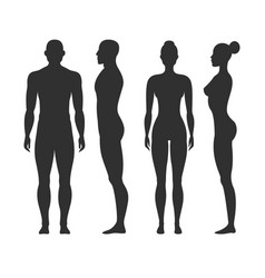 man and woman silhouettes human body outline vector image