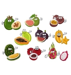 Ripe exotic asian fruits characters vector image