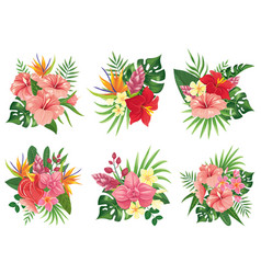 tropical flowers bouquet exotic palm leaves vector image
