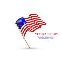veterans day flag usa vector image