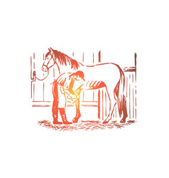 Young woman checking stallion horseshoe vector