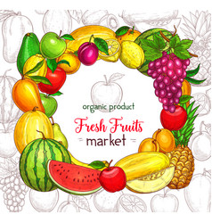 fruit frame border for organic food market poster vector image vector image