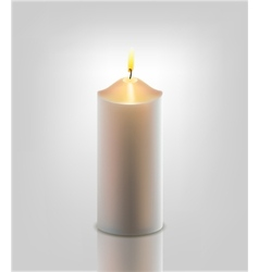 white burning candle vector image