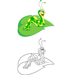 Caterpillar coloring page vector image