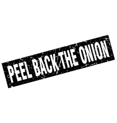 square grunge black peel back the onion stamp vector image