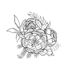 Bouquet of peony element of design vector